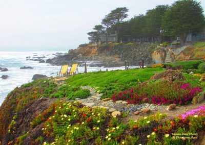 chairs and flowers on cliffside